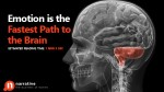 Emotion is the Fastest Path to the Brain
